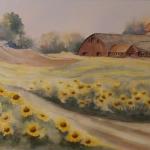Sunshine Farm